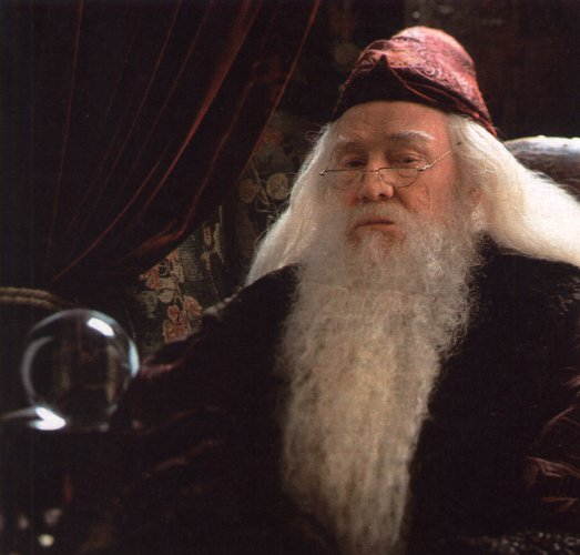 Harry Potter - Dumbledore 4